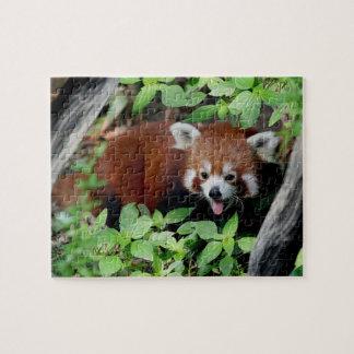 Puzzle Panda rouge espiègle