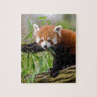 Puzzle Panda rouge mangeant la feuille verte
