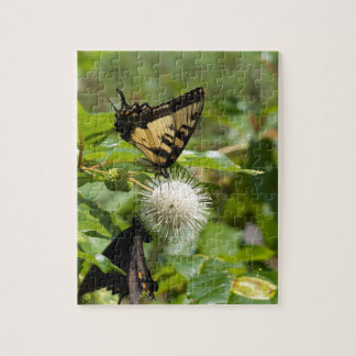 Puzzle Papillon de machaon de tigre sur le fleur sauvage