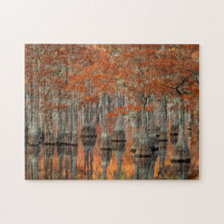 Puzzle Parc d'état des arbres de Cypress | George Smith,