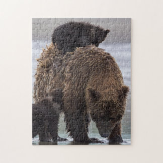 Puzzle Parc national de Clark de lac bear de Brown |