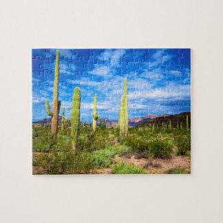 Puzzle Paysage de cactus de désert, Arizona