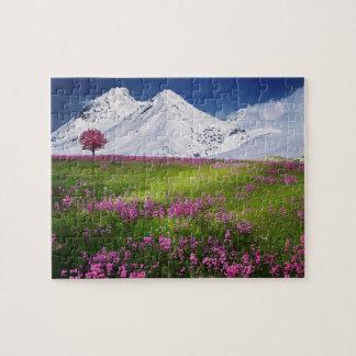 Puzzle Paysage pourpre de fleurs d'herbe de montagnes de