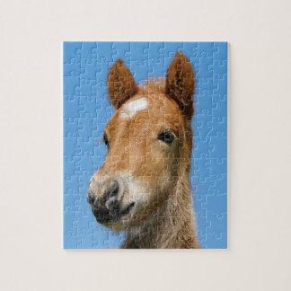 Puzzle Photo islandaise mignonne d'avant de tête de poney