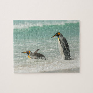 Puzzle Pingouins nageant sur la plage