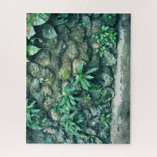 Puzzle Plantes sur le mur