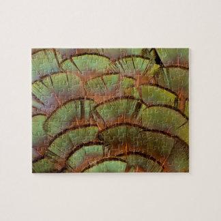 Puzzle Plume de faisan éventée par vert