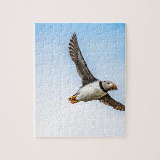 Puzzle Plume de mouche de faune de vol de mer d'oiseau de