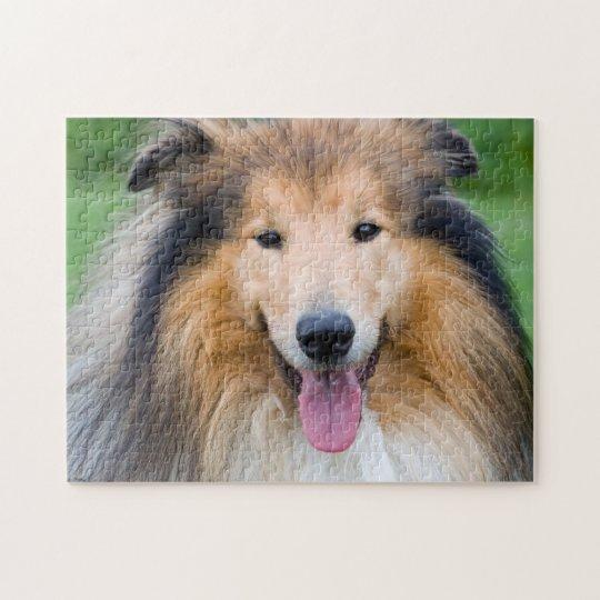 Puzzle Puzzle, 28 cm x 35,5 cm (252 pièces): chien Colley