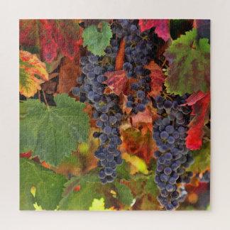Puzzle Raisin Puzzel de récolte de pays de vin