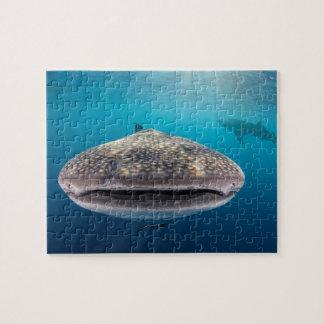Puzzle Requin de baleine, vue de face, Indonésie