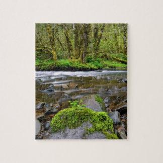 Puzzle Rivière dans la forêt verte, Orégon