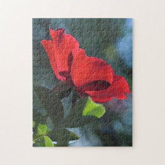 Puzzle rose