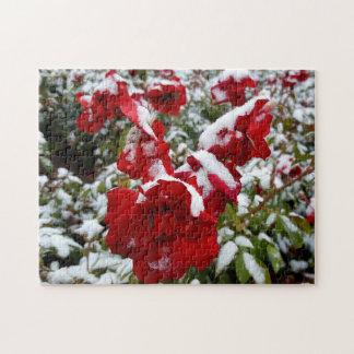 Puzzle Roses rouges couverts par la neige et le givre