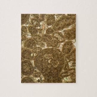 Puzzle Section mince de chaux paléozoïque sous la MICR