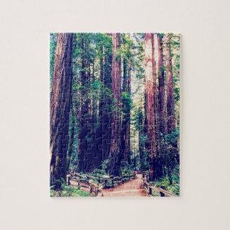 Puzzle Séquoias de Californie