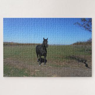 Puzzle Seul cheval noir dans le pâturage