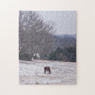 Puzzle Seulement dans la neige