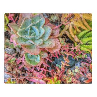 Puzzle Succulents