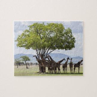Puzzle Sur le parc national du safari   Mikumi, la