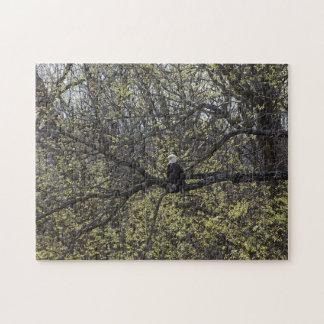 Puzzle Surveillance d'Eagle Painterly