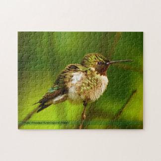 Puzzle Throated rouge de colibri