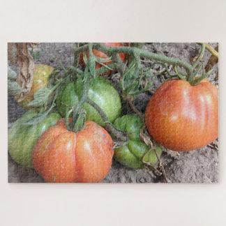 Puzzle Tomates organiques