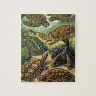Puzzle Tortue vintage de terre de tortues de mer par