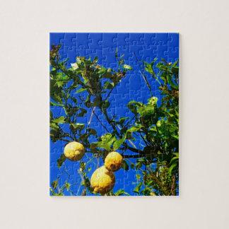 Puzzle Trois citrons siciliens