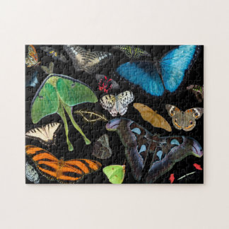 Puzzle Un monde des papillons et des mites