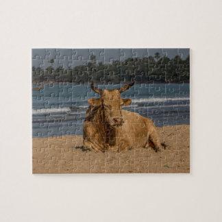 Puzzle Vache de la Gambie