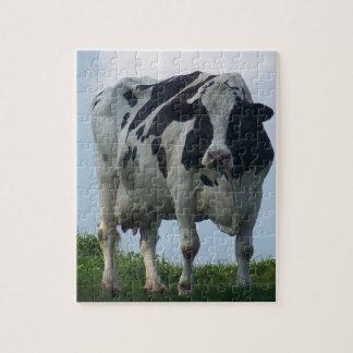 Puzzle Vache laitière noire et blanche du Vermont