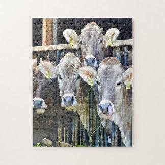 Puzzle Vers le bas sur les vaches à ferme