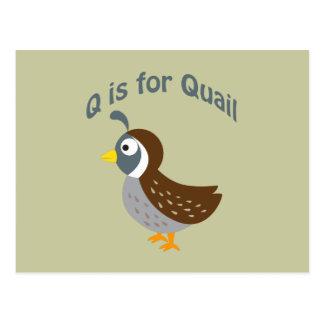 Q est pour des cailles carte postale