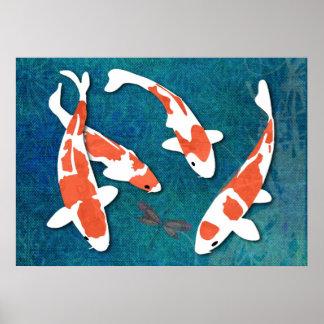 Quartet de Kohaku orange et blanc Koi Posters