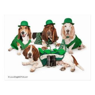Quartet irlandais de chien de basset cartes postales