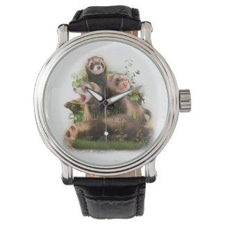 Quatre furets dans leur habitat sauvage montres cadran