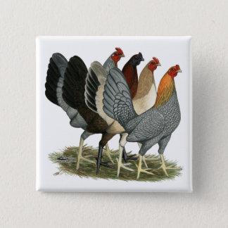 Quatre poules de Gamefowl Badges