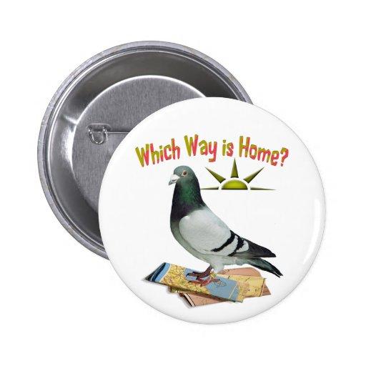Quelle manière est maison ? Art de pigeon Pin's Avec Agrafe