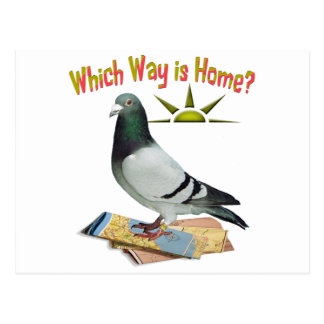 Quelle manière est maison ? Art de pigeon Carte Postale