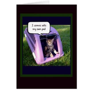 Question drôle de Valentines de chaton Cartes De Vœux