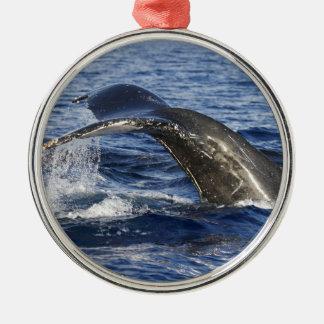 Queue de baleine ornement rond argenté