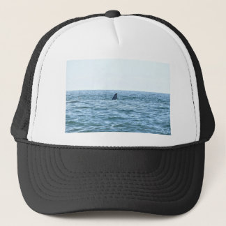 QUEUE MACKAY QUEENSLAND AUSTRALIE DE BALEINE CASQUETTE