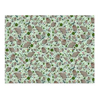Quokkas en vert carte postale
