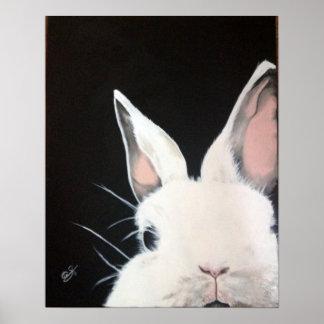 Rabbit.jpg blanc affiches