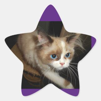 RaenaBelle atteint Sticker Étoile