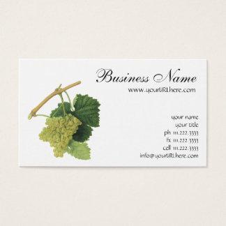 Raisins de cuve blanc sur la vigne, fruit vintage cartes de visite