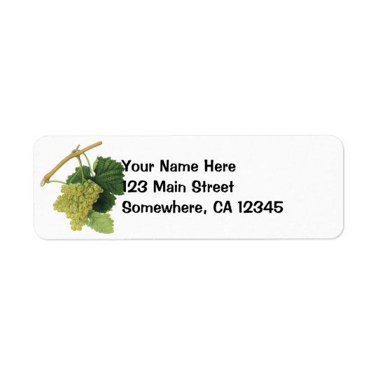 Raisins de cuve blanc sur la vigne, fruit vintage étiquette d'adresse retour