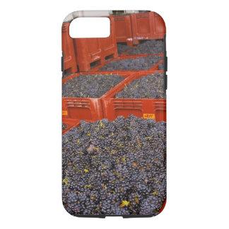 Raisins de Gamay juste dedans de la récolte au Coque iPhone 7