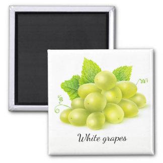 Raisins et menthe aimant